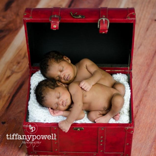 T & T were so cozy in the trunk i didn't want to disturb them.